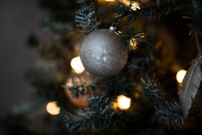 Christmas 2019 5